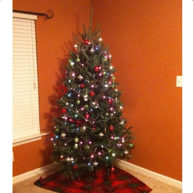 2011 Tree